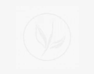 Pluimhortensia 'Little Lime' P9-tray