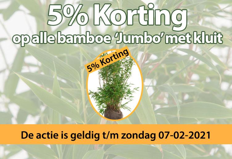 5% korting op alle bamboe 'Jumbo' kluit