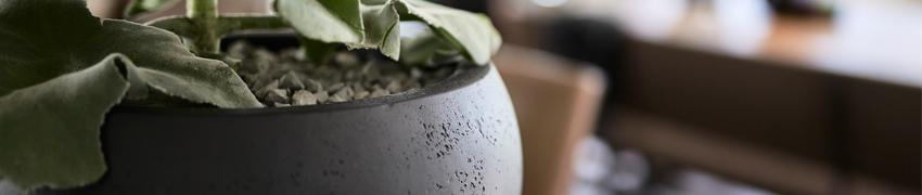 Plantenbakken_sfeer_betonlook